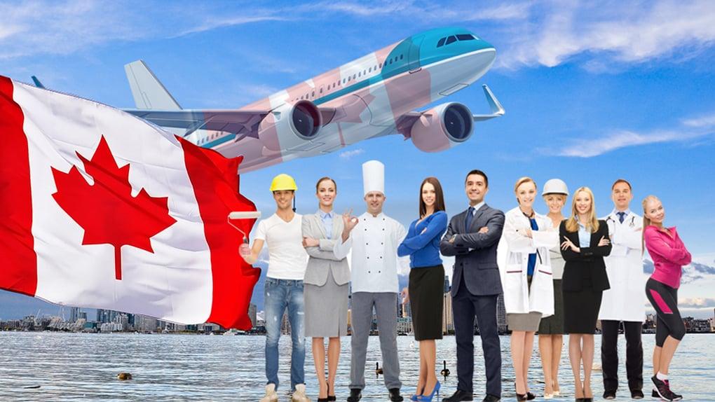 Tại sao bạn nên sử dụng dịch vụ tư vấn trước khi đến Canada